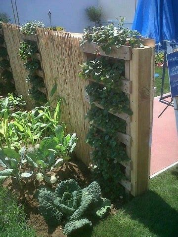 Fence Planters by Fence Planter Garden Ideas
