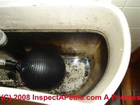 sulfur smell coming from bathroom sulfur smell coming from bathroom 28 images sulfur smell in bath sink diy forums