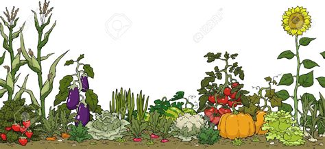 vegetable clipart vegetable gardening pencil and in