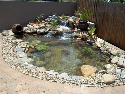 how much do koi ponds cost in orlando central florida