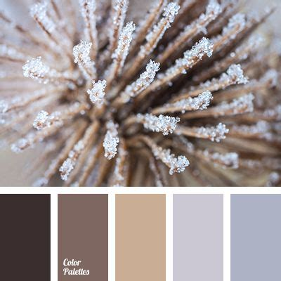 colors that match with brown 1000 ideas about dark brown carpet on pinterest carpets