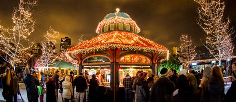 zoo lights at lincoln park zoolights presented by comed and powershares qqq by