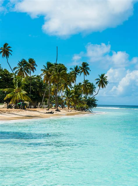 south uk holidays top 5 must see places where to in january 2018 the 7 top places to