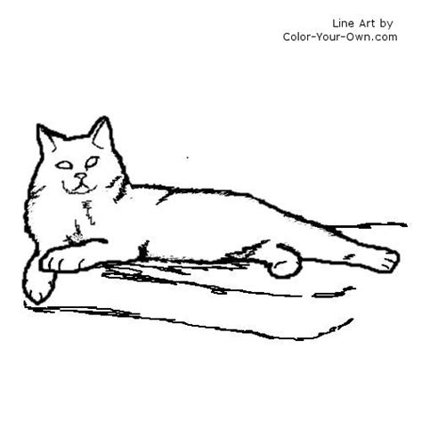 manx cat coloring page longhaired manx cat coloring page