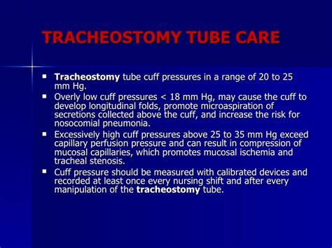 trachea search results dunia photo