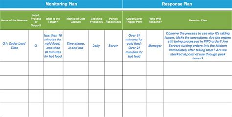 project monitoring plan template monitoring response plan template exle