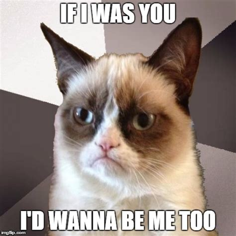Me Too Meme - musically malicious grumpy cat imgflip
