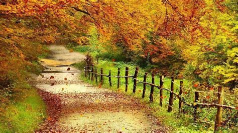 beautiful autumn scenery wallpapers full hd wallpaper