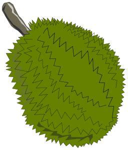 jackfruit clipart /food/fruit/jack_fruit/jackfruit