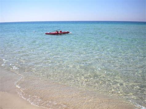 porto cesareo italia punta prosciutto foto di palude conte e duna