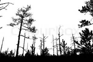 tree silhouette on white background vector illustration
