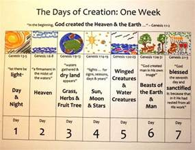 creation gospel workbook one the creation foundation the creation gospel books 25 unique 7 days of creation ideas on genesis