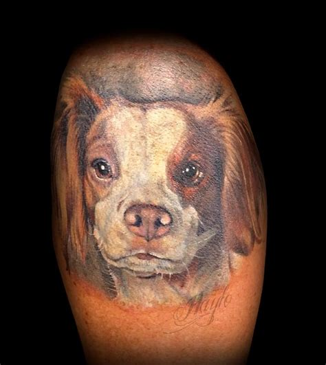 brittany tattoo spaniel portrait by haylo tattoonow