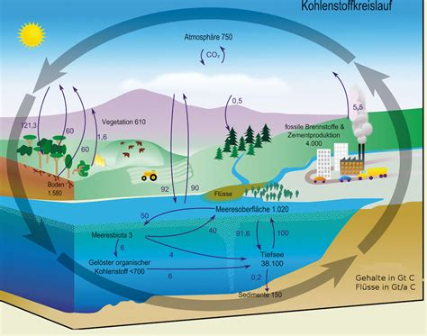 wann entsteht co2 bine informationsdienst basisenergie klima und energie