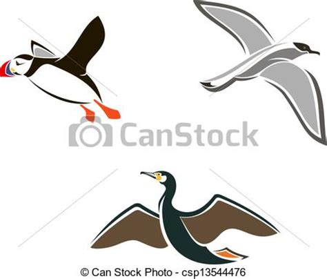 drawings of a sea bird clipart best vectors illustration of isolated sea birds set of sea