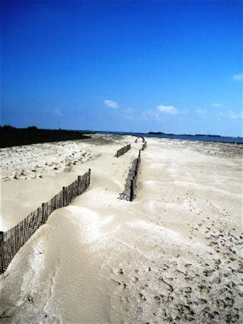 boardwalk at the state park. picture of grand isle state