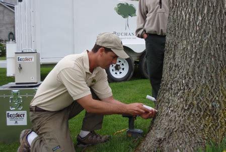 Niagara Mba Cost by Niagara Arborist Plant Health Care Emerald Ash Borer