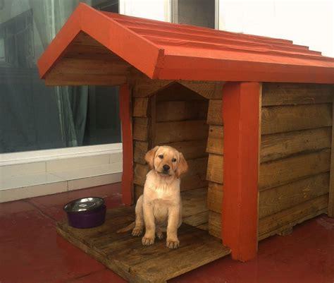 casas de madera para perros casa de madera para perro c terraza techo