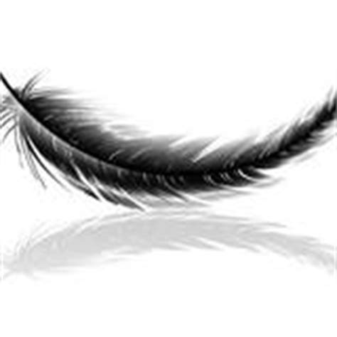 Signs Of Angels Feathers Appear When Angels Are Near Black Feather Meaning