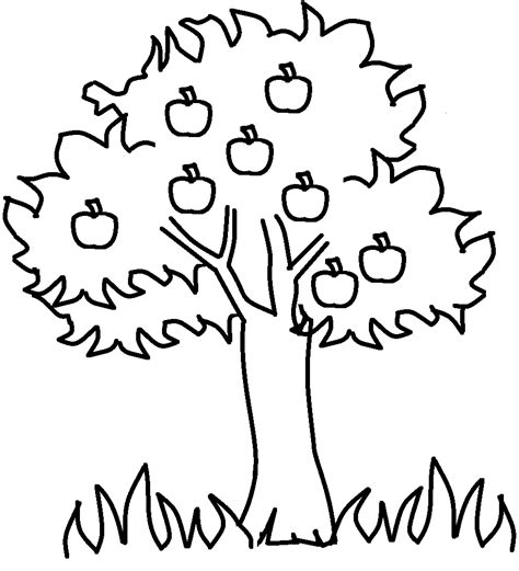 coloring page of a apple tree free printable apple coloring pages for