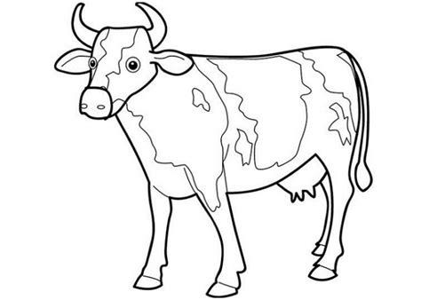 vorlagen zum ausdrucken ausmalbilder kuh malvorlagen