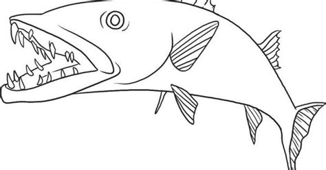 coloring pages of tiger fish free downloadable jumbo fish coloring pages free