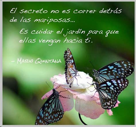 imagenes con mariposas y reflexiones preciosas imagenes de mariposas con poemas bellos