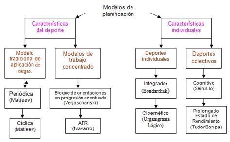 Modelo De Planificacion Curricular De Tendencias Y Regularidades De La Planificaci 243 N Deportiva