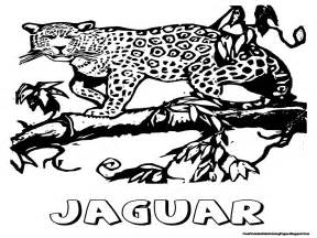 jaguar coloring pages jaguar coloring pages free printable coloring pages