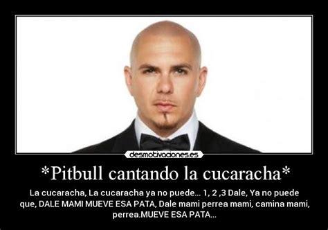 Pitbull Meme Dale - pitbull dale meme memes