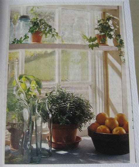 window sill plants home design or shabby chic pour moi