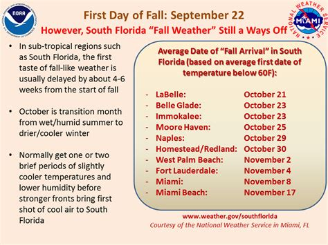 days of the fall a reporter s journey in the syria and iraq wars books it doesn t feel like fall south florida reporter