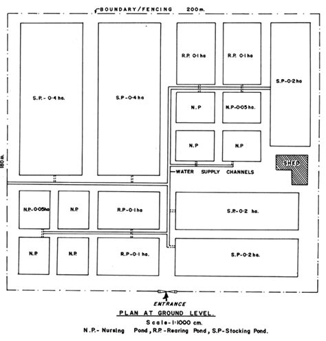 catfish hatchery layout 2016 nigeria catfish pond farm architectural drawing design