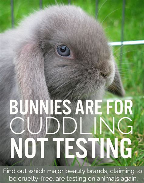test animali china s demand for animal testing in cosmetics and the