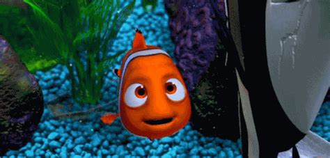 gif disney finding nemo nemo disneyfansonly disneyfansonly