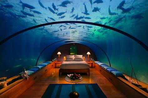 Unbelievable Flooring And Decor Amazing Underwater Hotel Suite Techeblog