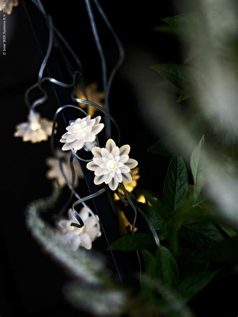 Solar Powered Decorative Ideas To Light Up Your Yard White Flower Lights