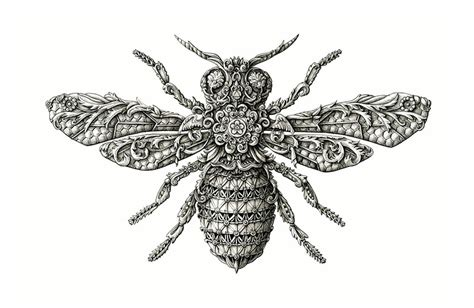 doodle bug scientific name new ornate insects by alex konahin colossal