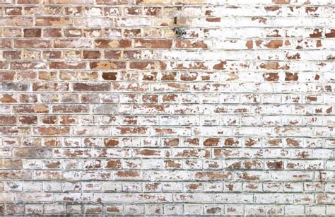 how to paint exterior brick walls white paint bricks wall mural muralswallpaper co uk