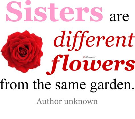 images of love of sisters 80 most beautiful sister quotes best sister love