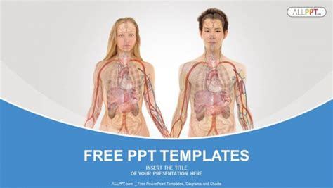 Anterior View Of Human Body Powerpoint Templates Human Powerpoint Template