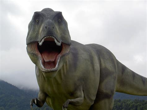 Dino Tirex endangered animals facts for information pictures
