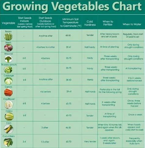 Seed Starting Chart Garden Fun Pinterest When To Plant Seeds For Vegetable Garden