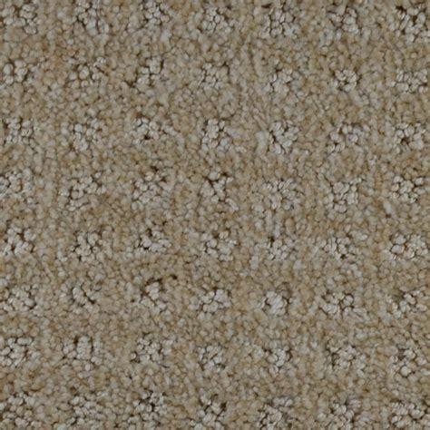 home decorators carpet home decorators collection carpet sle traverse