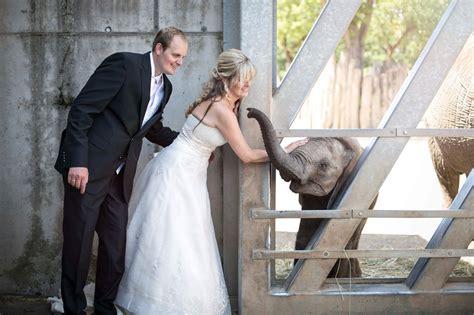 Hochzeit Halle by Erste Hochzeit Im Zoo Halle Du Bist Halle