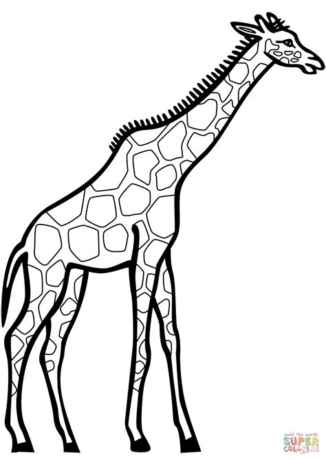 Giraffe Coloring Pages by Coloring Pages Giraffe Giraffes Free Book