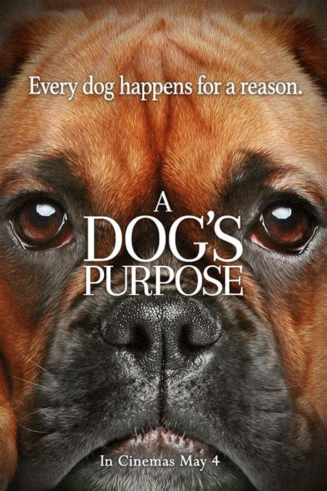 a s purpose on netflix 25 best ideas about a dogs purpose on january 27 2017 and