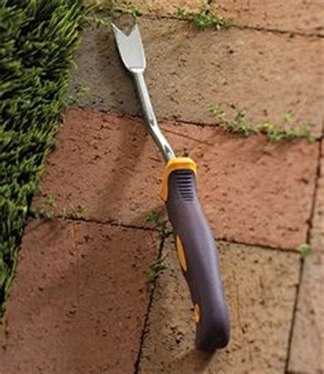 How To Remove Weeds Between Patio Stones by 1000 Images About The Great Outdoors On