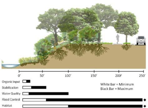 Landscape Buffer Definition Riparian Zone Restoration Austintexas Gov The Official