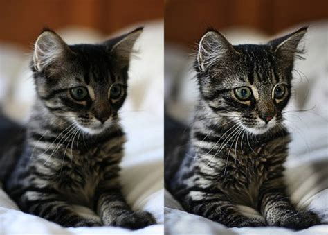 image enhancer 45 excellent photo enhancement tutorials for photoshop